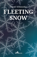 Fleeting Snow